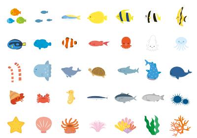 かわいい海の生き物のイラストセット