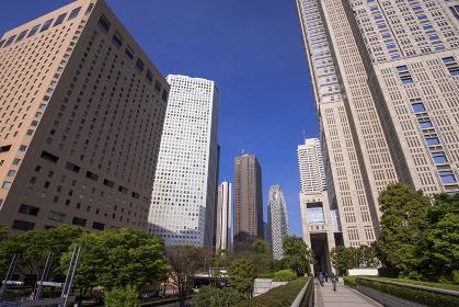 東京都 新宿副都心の近代高層ビル群