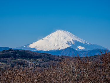 早春の青空 吾妻山公園からの富士山 1月