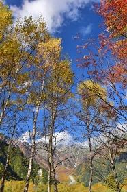 信州 上高地の秋景色