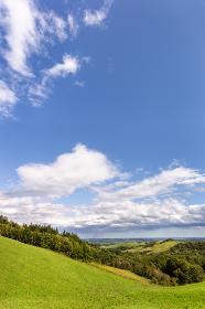 日本・北海道東部の弟子屈町、900草原