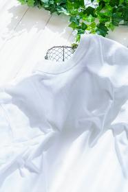 洗いたてのシャツ