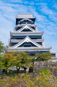 夏の熊本城(熊本県)
