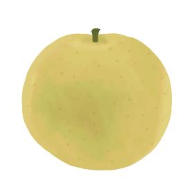 秋の味覚の手書きベクター化イラスト、瑞々しい梨