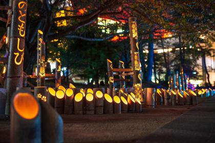 秋のイベント小倉城竹灯り