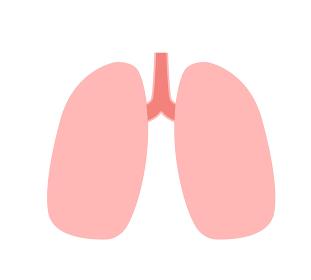 肺 アイコン 線無し
