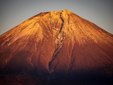 夕陽に照らされされる富士山山頂 静岡県田貫湖から 1月
