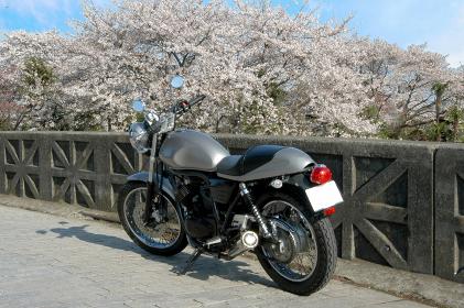 桜前線ツーリング