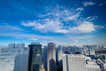 【東京都】新宿都庁展望台より【2020冬】