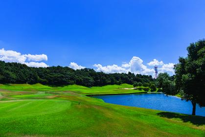 ゴルフ フェアウェイ 青空 【日本のゴルフ場のイメージ】