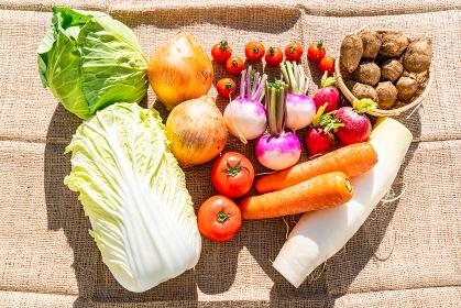 野菜 俯瞰 やさい 緑黄色野菜