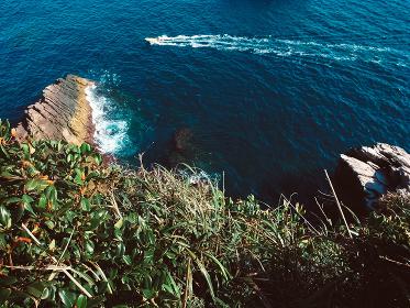 崖の上の森林から見える海と船