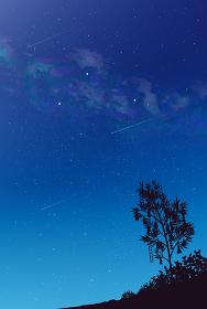 天の川と夏の大三角の風景イラスト 七夕 短冊 背景素材 縦