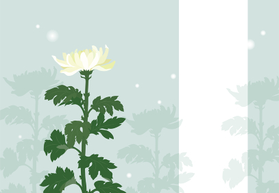 菊の花の喪中はがき(文字無し)