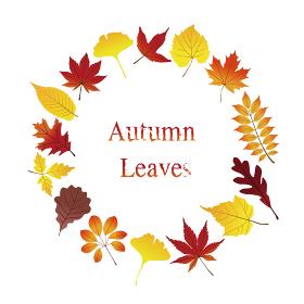 紅葉のリース カラフルな秋の葉