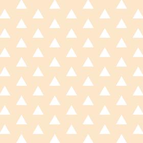 鱗模様 オレンジ 7