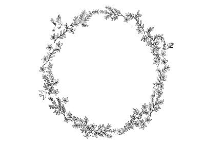 草花と鳥のフレーム・オーナメント ナチュラルテイストの飾り罫 円形 ベクターデータ