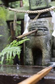 諏訪神社のこま犬の井戸