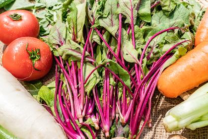 野菜 俯瞰 やさい 緑黄色野菜 ベジタブル