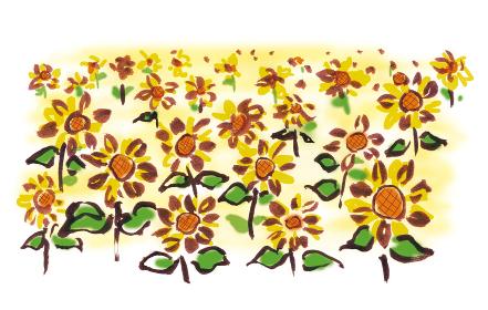 手描きイラスト素材 植物 ひまわり畑 ヒマワリ 向日葵 ひまわり
