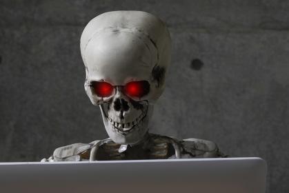 ノートパソコンを見る骸骨