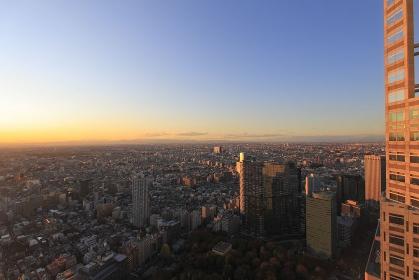 西新宿町並み夕景