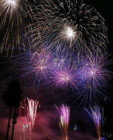熱帯夜の夜空を彩る納涼花火