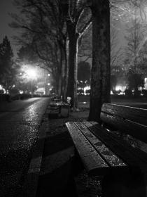 夜の雨の公園