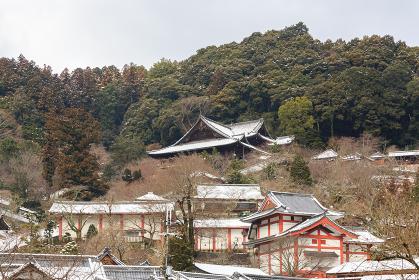 長谷寺 (奈良県桜井市 2013/01/15撮影)