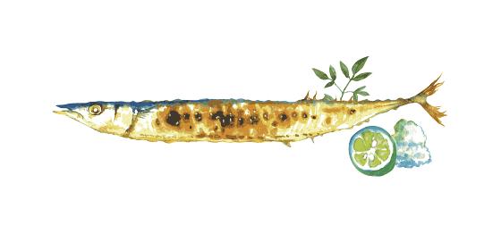 さんま 焼き魚 水彩 イラスト