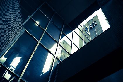 見上げたビルのガラス壁面