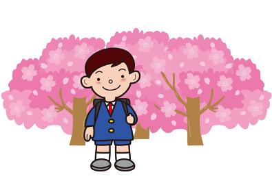 満開の桜と小学生の男の子