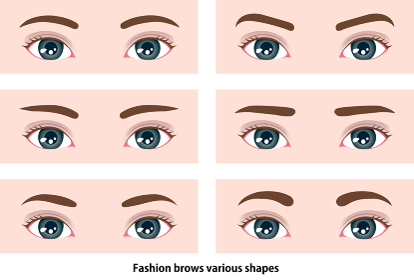 若い女性の眉毛の形イラスト (メイク・化粧) / 西洋人・欧米人