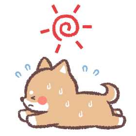 熱中症の柴犬と太陽