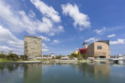 紫川の桜と小倉城と北九州市役所 福岡県北九州市