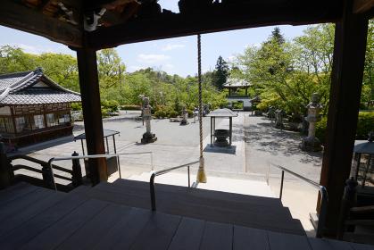 根来寺 本堂から鐘楼門を望む 和歌山県岩出市