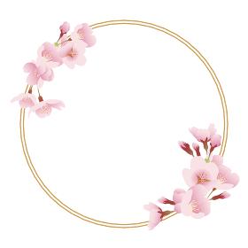 桜の花と金枠(丸型、サークル)
