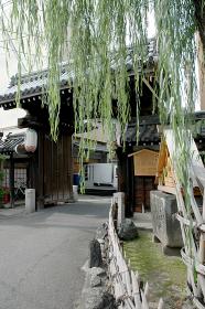 京都島原 大門脇の消火井戸と柳 京都市