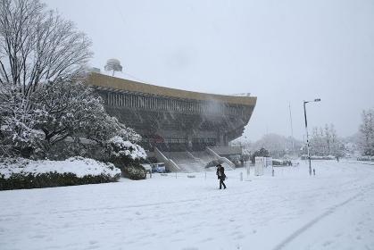 東京都心日本武道館雪景色
