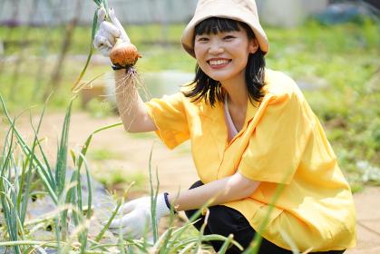 玉ねぎを収穫する女性