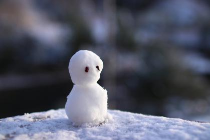 遠くを見つめる雪だるま