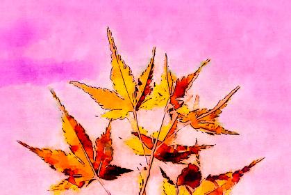 秋のイメージ 水彩画風の紅葉