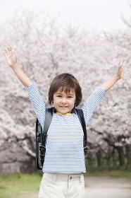 桜をバックにバンザイをする男の子