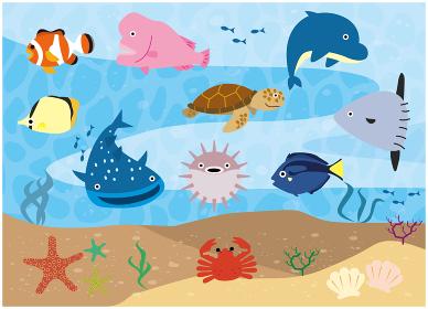 魚 生き物 魚類 海