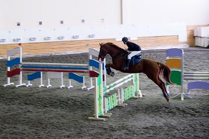 Beautiful young girl jockey riding horse. ready to pounce