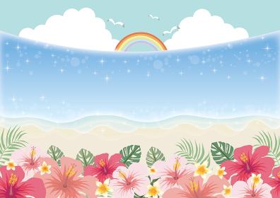 夏:海 バカンス 花 ハイビスカス モンステラ プルメリア ハワイ バカンス 夏休み 旅行