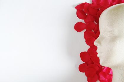 造花の赤い花びらと発泡スチロール製モデル人形の左向きの横顔