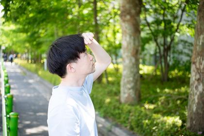 爽やかな新緑の中空を眺める男性