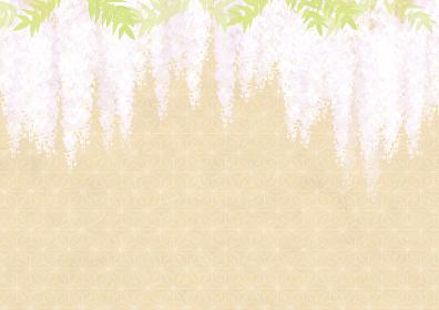 藤棚の花の背景イラスト