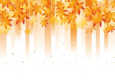 紅葉 和風柄 淡い 秋